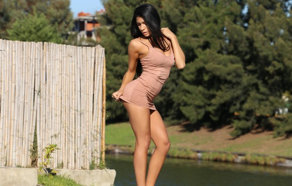 Picture water, the sun, trees, sexy, pose, the fence, makeup, figure, slim, dress, brunette, hairstyle, legs, …