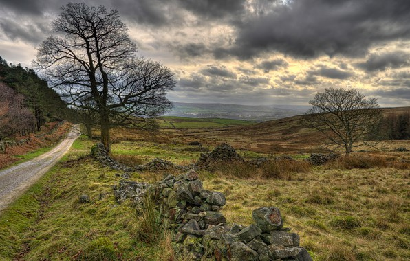 Picture road, field, grass, clouds, overcast, Britain, Walker Fold, Chaigley, Rose Cottage