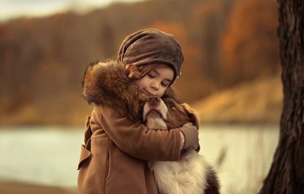 Picture mood, dog, friendship, girl, friends, bokeh, hugs