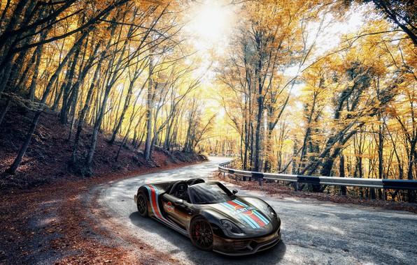 Picture Porsche, Spyder, 918, Autumn, Martini, VAG