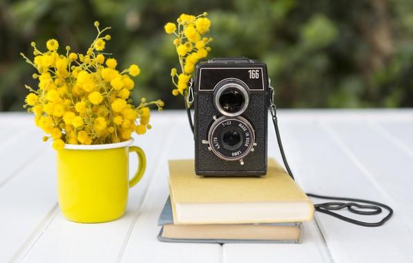 Picture flowers, books, bouquet, yellow, books, composition, retro camera
