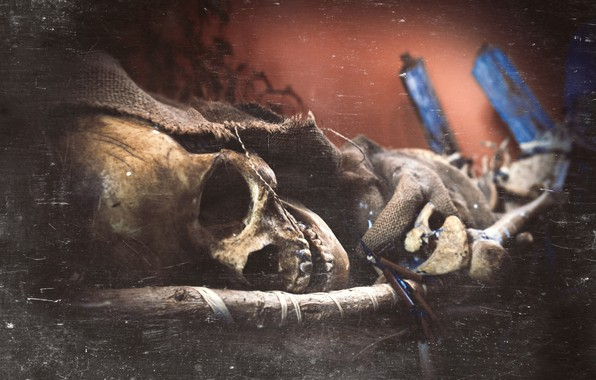 Photo wallpaper skeleton, Tomb of The Eagles, skull, Scotland, Orkney Islands, Scotlandia, texture, Orkney, The tomb of ...