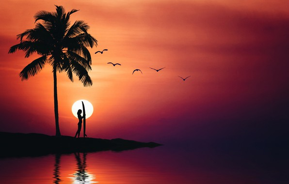 Picture sea, summer, the sky, girl, birds, Palma, silhouette