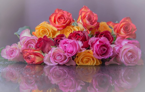 Picture flowers, reflection, roses