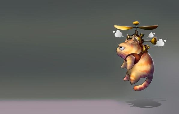 Picture cat, minimalism, art, propeller, steampunk cats