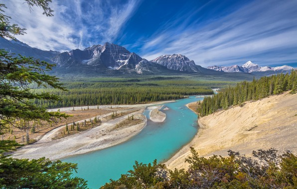 Picture forest, mountains, river, Canada, Albert, Alberta, Canada, Jasper National Park, Jasper national Park, Athabasca River, …