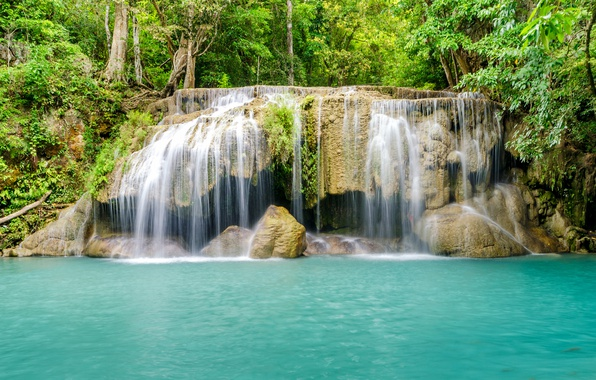 Picture forest, river, waterfall, forest, river, landscape, jungle, blue, beautiful, waterfall, tropical
