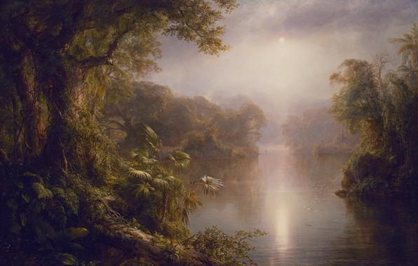 Picture forest, landscape, birds, river, dawn, jungle, painting, El Rio de Luz, Fredrik Edwin Curch