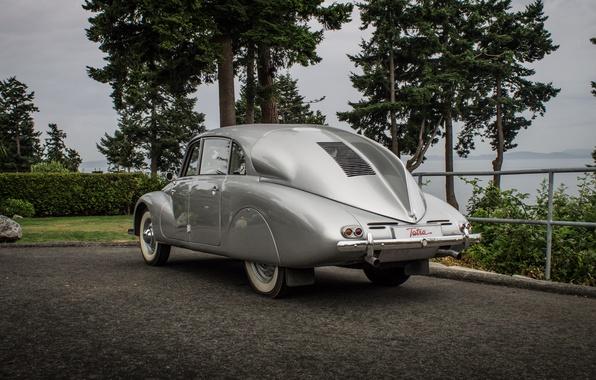 Picture asphalt, trees, retro, background, silver, the bushes, Fastback, Czechoslovakia, Fastback, Executive, Tatra 87