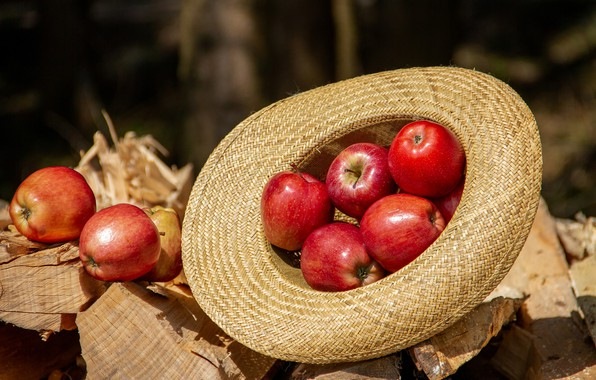 Picture Red, Hat, Apples