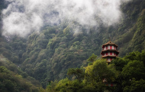 Picture mountains, fog, forest, Taiwan, Taroko Gorge, Selet