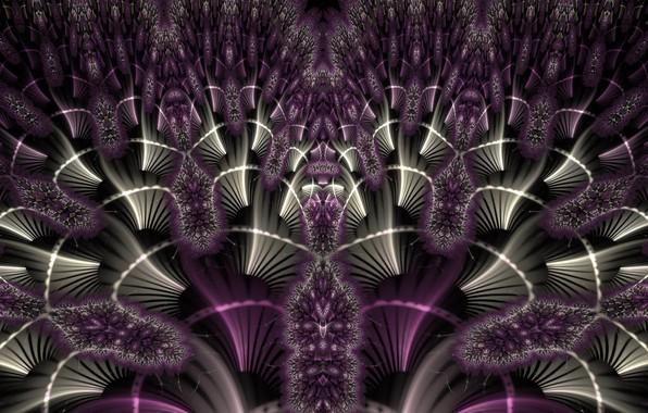 Picture purple, pattern, color, fractal