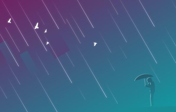 Picture purple, birds, rain, people, umbrella, rain, umbrella, man, rectangle, azure-grey, muted