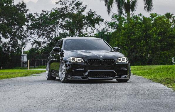 Picture BMW, Green, Black, F10, Sight