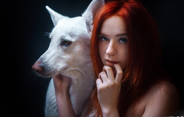 Picture look, face, face, hand, portrait, dog, red, redhead, black background, Alexander Drobkov-Light, Maria Nekrasova