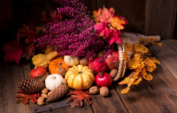 Picture leaves, flowers, pumpkin, nuts, still life, garnet, the gifts of autumn
