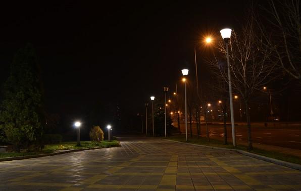 Picture macro, nature, Park, background, widescreen, Wallpaper, mood, track, shop, wallpaper, Ukraine, path, widescreen, Donetsk, HD …