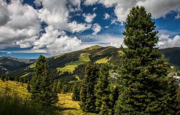 Picture greens, summer, the sky, the sun, clouds, trees, mountains, field, home, Austria, valley, forest, meadows, …