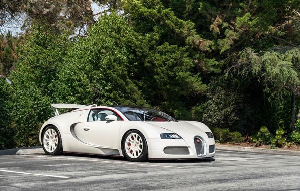 Picture Bugatti, veyron, white, parking