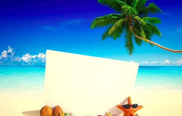 Picture sea, beach, tropics, Palma, coconut, card, slates