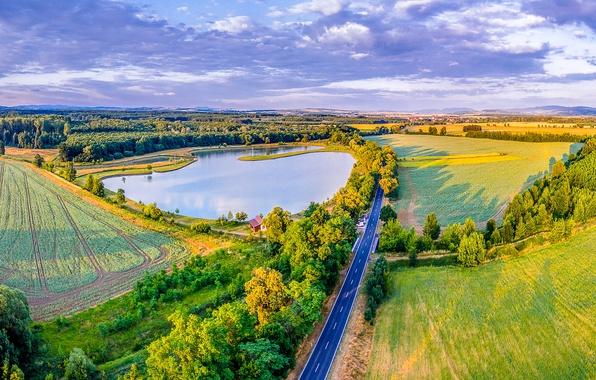 Picture road, greens, the sun, trees, lake, field, Czech Republic, panorama, forest, Moravsky Pisek