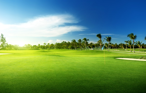 Picture The sky, Nature, Palm trees, Field, Landscape, Lawn, Golf