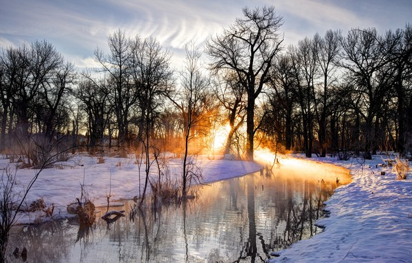 Picture The sun, Nature, Reflection, Trees, River, Snow, Branches, Footprints in the Snow