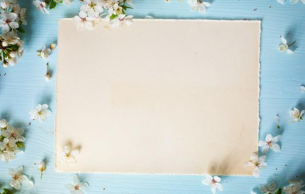 Photo wallpaper flowers, spring, Apple, wood, blue, blossom, flowers, spring, frame