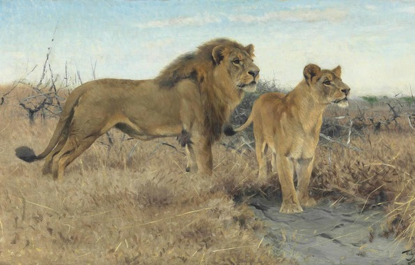 Picture 1922, German painter, Friedrich Wilhelm Kunert, German painter, Friedrich Wilhelm Kuhnert, Lions on the African ...