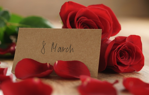 Picture bouquet, petals, red, March 8, romantic, gift, roses, red roses