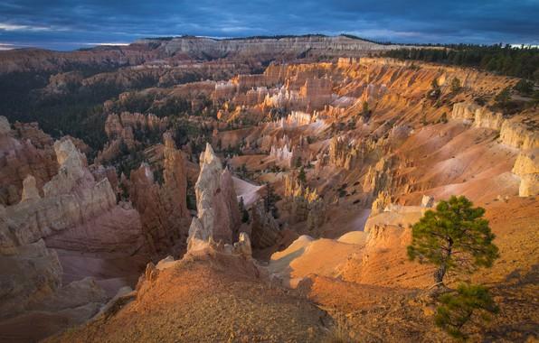 Picture Nature, Rocks, Peaks