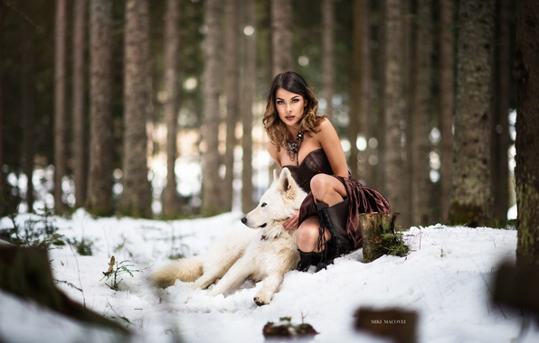 Picture winter, forest, girl, snow, wolf, dog, dress