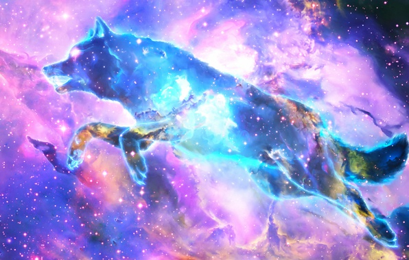 Picture space, nebula, wolf