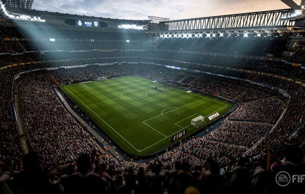 Picture sport, grass, stadium, crowd, soccer, Fifa, fans, arena, Fifa 18