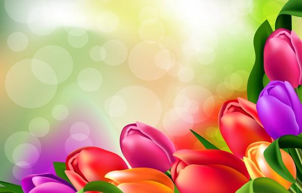 Picture flowers, figure, tulips, brightness
