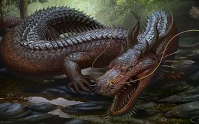 Picture dragon, fang, by arvalis, chinese dragon