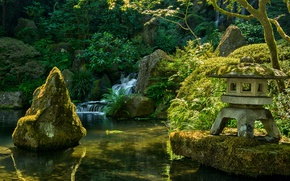 Picture greens, trees, branches, pond, stream, stones, waterfall, moss, garden, USA, the bushes, Portland, Japanese Garden