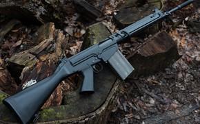 Picture Austrian, FN FAL, STG 58