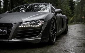 Picture car, machine, auto, forest, fog, rain, Audi, audi, race, Batman, car, sports car, camouflage, car, …