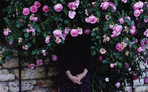 Picture Girl, Roses, Roses, Girl