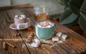 Picture coffee, chocolate, drink, cinnamon, marshmallows