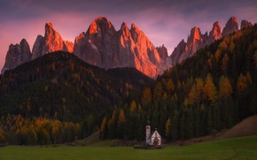 Picture forest, light, mountains, Alps, Church