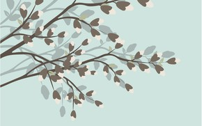 Picture background, Wallpaper, flowers, blackground