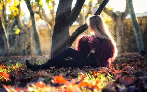 Picture autumn, girl, the sun, trees, photo, foliage, model, hair, fur, sitting, Ana Lopez, Paul Gray