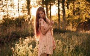 Picture grass, the sun, trees, nature, dress, hairstyle, brown hair, bokeh, Johanna, Martin Kühn, Martin Kuhn