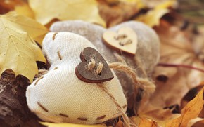 Picture autumn, leaves, macro, Heart, button