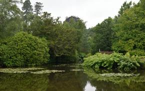 Picture Nature, Lake, Summer, Nature, Summer, Lake