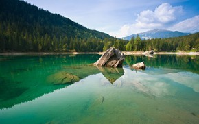 Picture forest, mountains, nature, lake, Alps