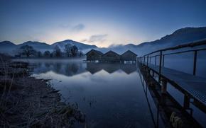 Picture night, bridge, nature, lake