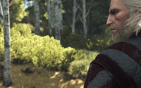 Picture Look, The Witcher, Geralt, Witcher 3, Screenshot